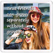 Motivational Magnet Friendship MMF 9110