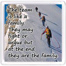 Motivational Magnet Teamwork MMT 1014