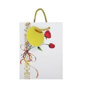 Gift Bag Small  8129 a