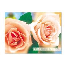 Seasons Greeting Card SGC 1607