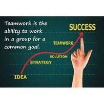 Ajooba Dubai Teamwork Goal Puzzle 1007