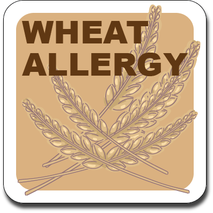 Allergy Label ST AL G 021