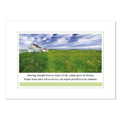 Greeting Card (House/Fields)