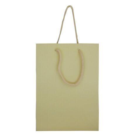 Gift Bag Medium 005