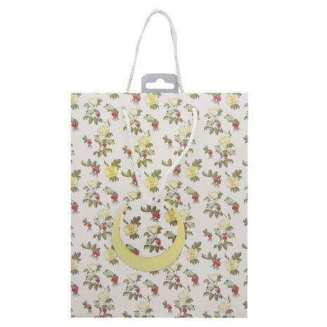 Gift Bag Medium 8062 a