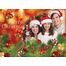 Assorted Christmas Cards Pack 1