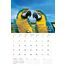 Friend - Personalised Sentimental Wall Calendar